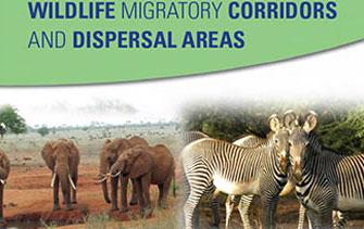 wildlife-migratory-report